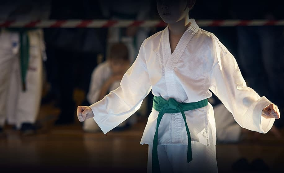 What is the belt order in TaeKwonDo