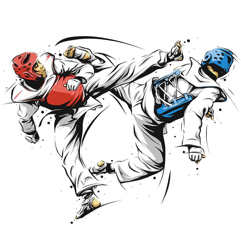 Difference Tae Kwon Do and Karate
