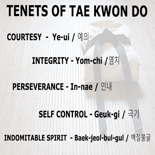 Tenets of Tae Kwon Do Explained