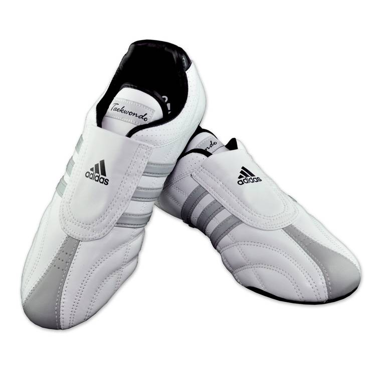 Training Shoes for Tae Kwon Do