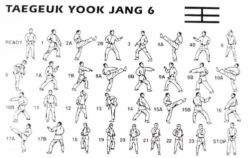 Form 6 Taegeuk Yook Jang